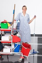 professional cleaners london