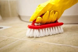 professional cleaners in Balham