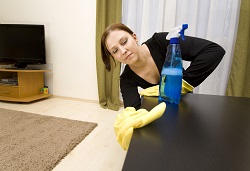 domestic cleaning Bermondsey