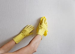 Maida Vale cleaning agency