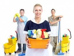 Mayfair cleaning agency