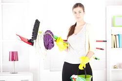cleaning a carpet Paddington
