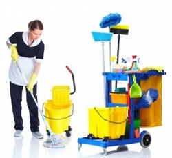 Tufnell Park carpet washers Tufnell Park