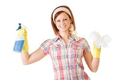 domestic cleaning Chiswick