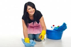 domestic cleaning Cranford