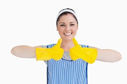 Kingston carpet cleaning company KT1