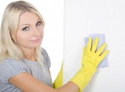 professional cleaners in Parsons Green