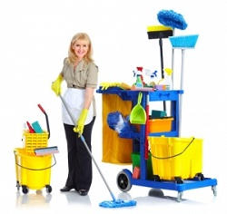professional cleaners in Upminster
