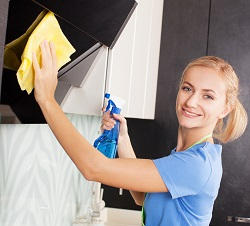 professional cleaners in West Hampstead